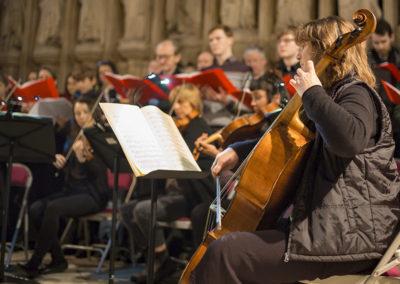 Gabriel Amherst, cello (credit Nick Rutter)
